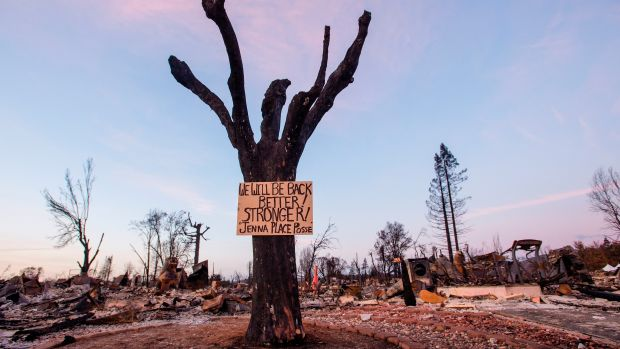 A sign of resilience posted on a tree in a charred neighborhood of Santa Rosa, California, on October 20th, 2017.