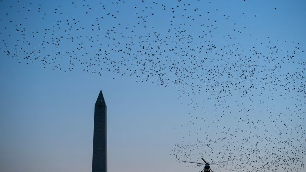 Birds fly past as Marine One, with President Donald Trump on board, lands on the South Lawn of the White House on December 21st, 2017, in Washington, D.C.