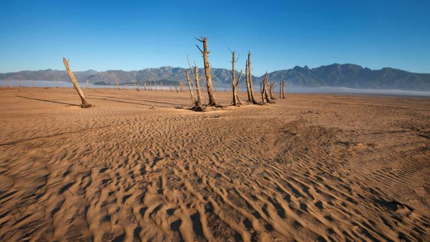 Bare sand and dried tree trunks stand out at Theewaterskloof Dam, outside of Cape Town, South Africa.