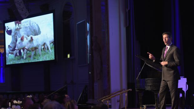 Wayne Pacelle speaks onstage during the Humane Society of the United States' Los Angeles Benefit Gala at the Beverly Wilshire Hotel on May 16th, 2015, in Beverly Hills, California.