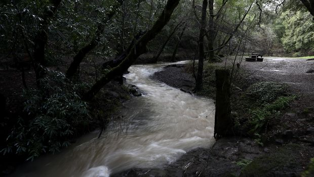 A river of water flows off of Phoenix Lake on January 12th, 2017, in Greenbrae, California.