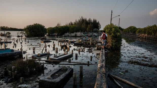 A man walks through a public cemetery submerged by flood waters from rising sea levels on June 8th, 2017, in Semarang, Indonesia.