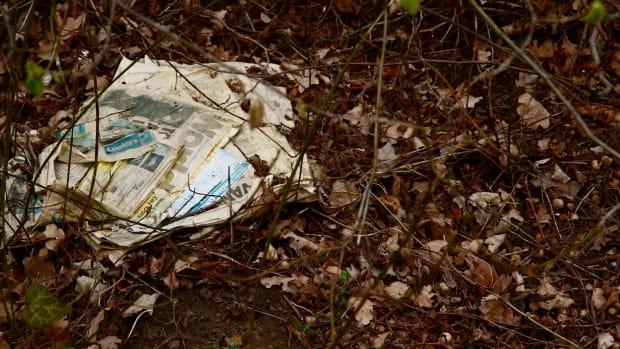 Rotting newspaper