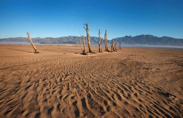 Notes on a New Desert