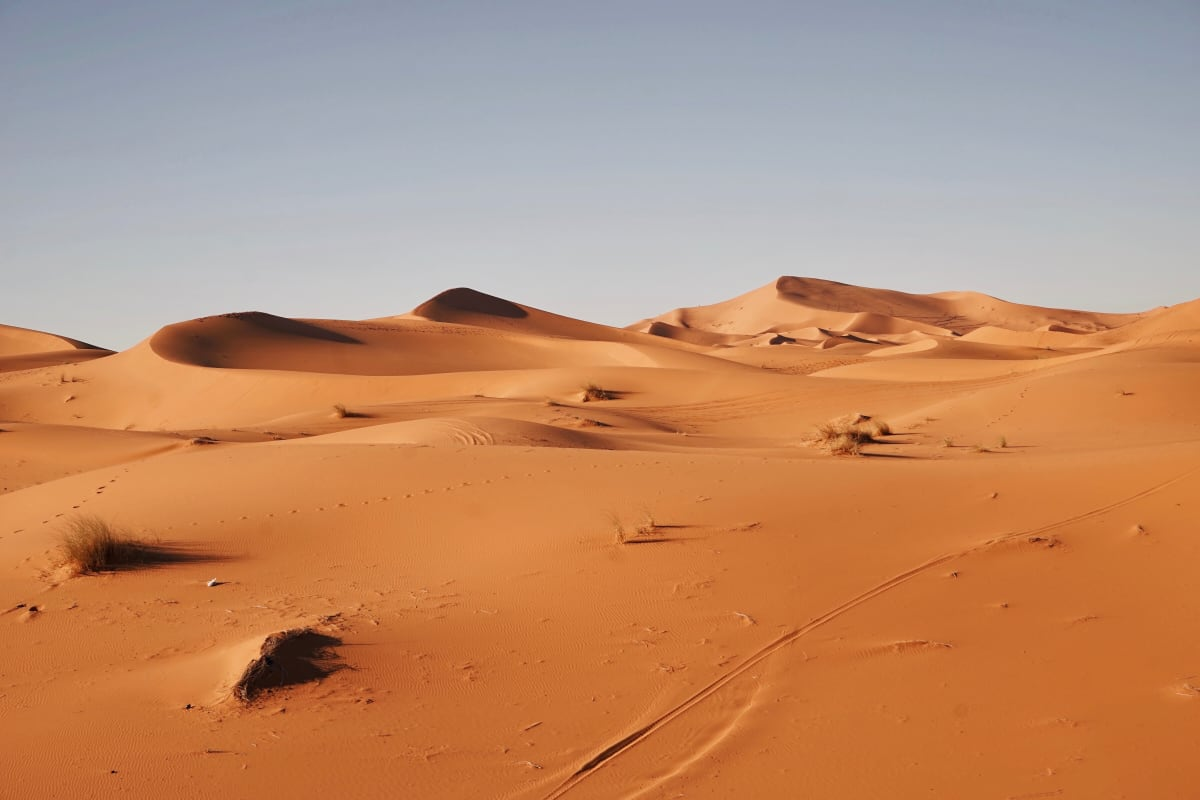 Expanding Oil Exploration Threatens One of the Sahara's Largest Nature Reserves