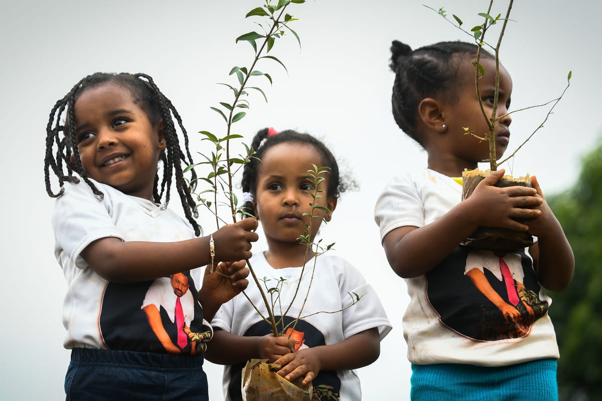 Ethiopians Tackle the Climate Crisis With 350 Million New Trees (in Photos)