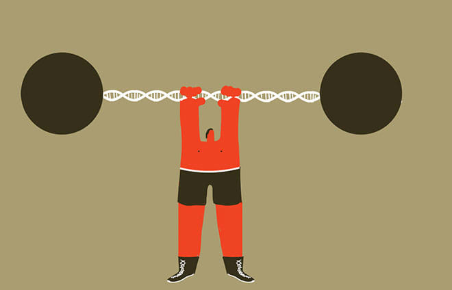 Is the Will to Work Out Genetically Determined?
