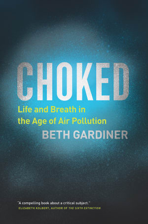 How Humanity Can Solve Our Crisis of Air Pollution: Beth ...