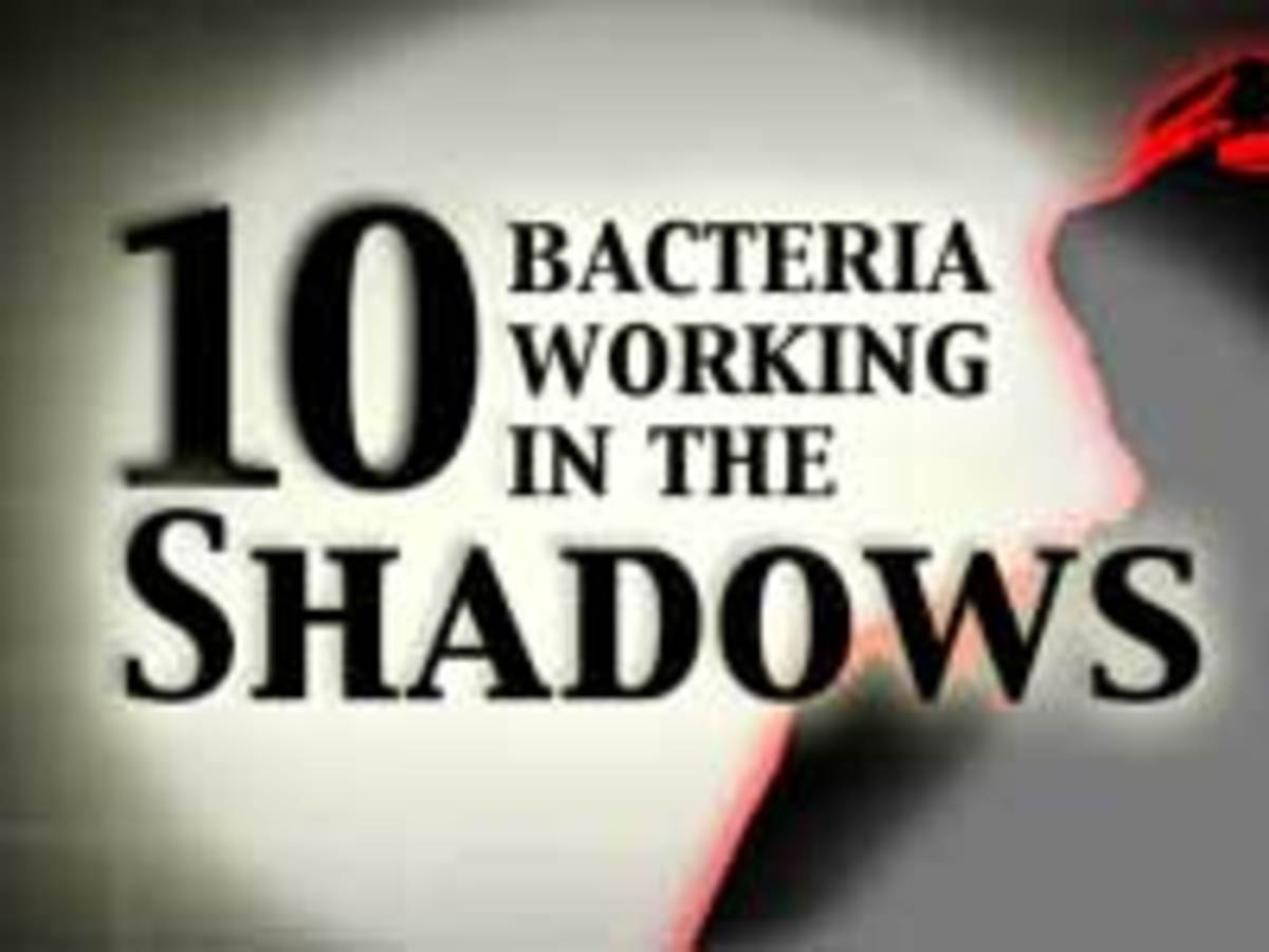 As Valerie Brown has shown, bacteria are indeed us. But who are these microscopic allies and enemies? Click this image to meet our Top Ten Bacteria Working in the Shadows.