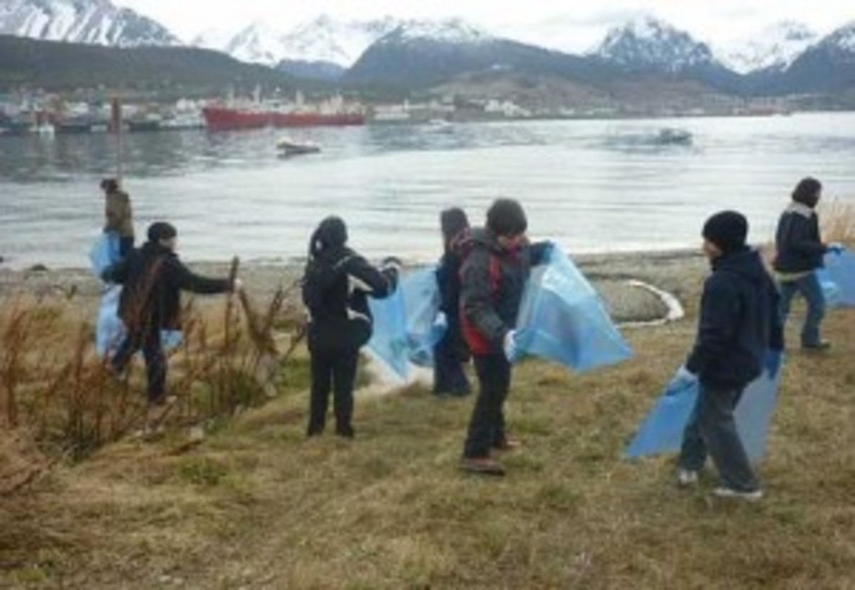 In southern Argentina, schoolchildren cleaned their coastline. Currents disburse trash the far north. (Courtesy 350.org)