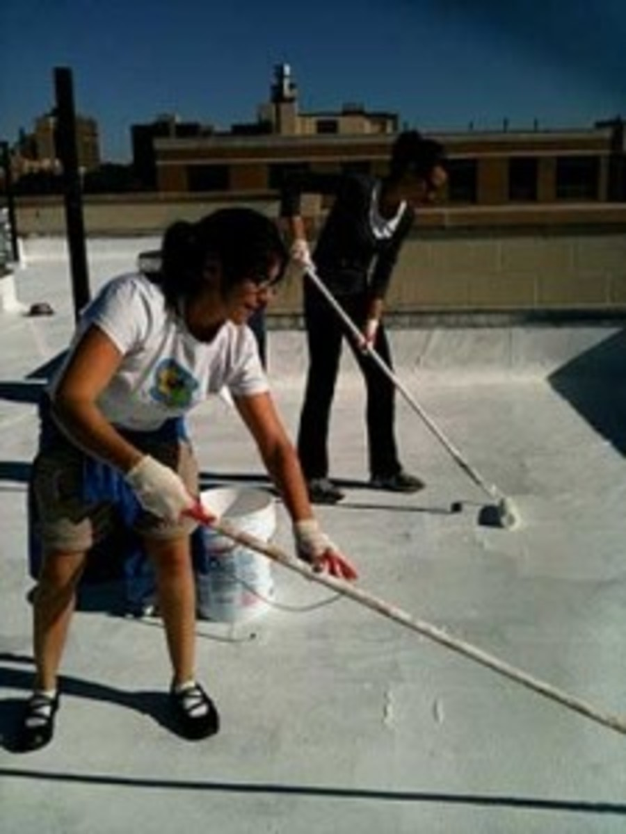 In Harlem, roofs were painted white —an easy way to reflect heat and cool down cities (and the planet). (Courtesy 350.org)
