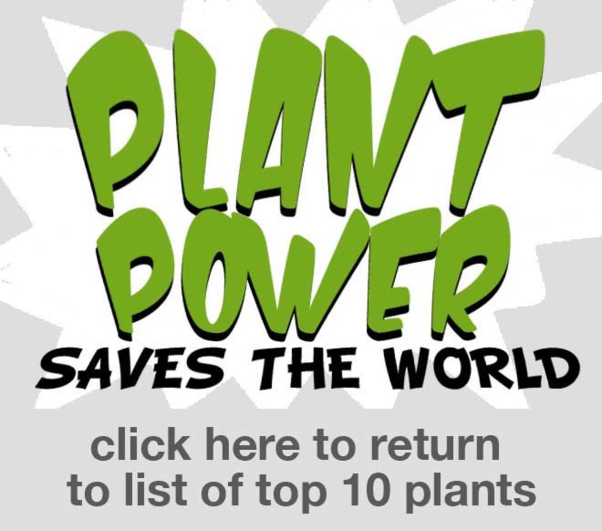 TOP_10_PLANTS_LOGO_v2