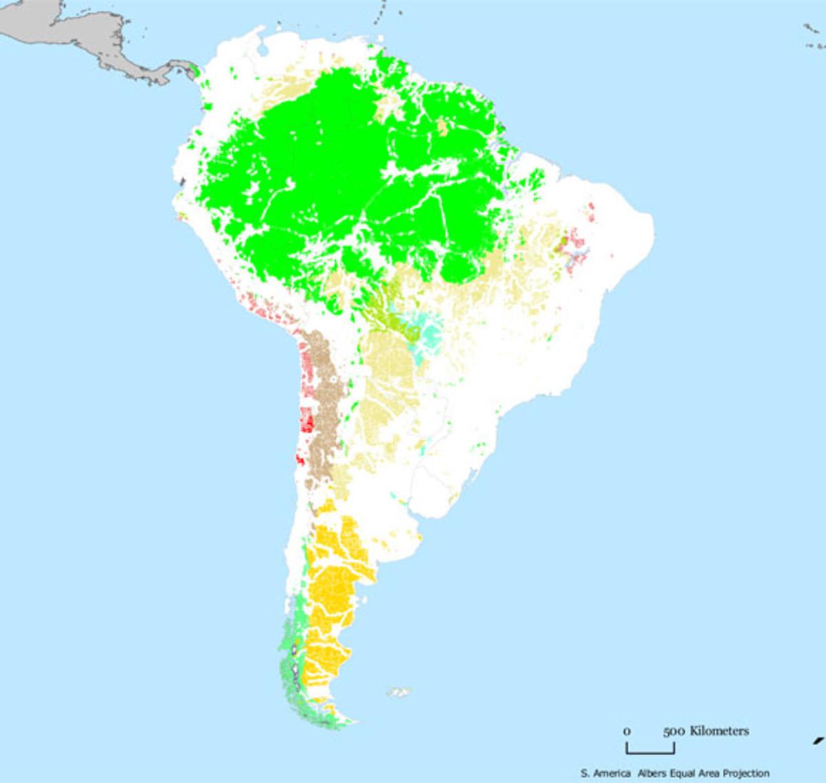 mmw_South_America_wild_0509