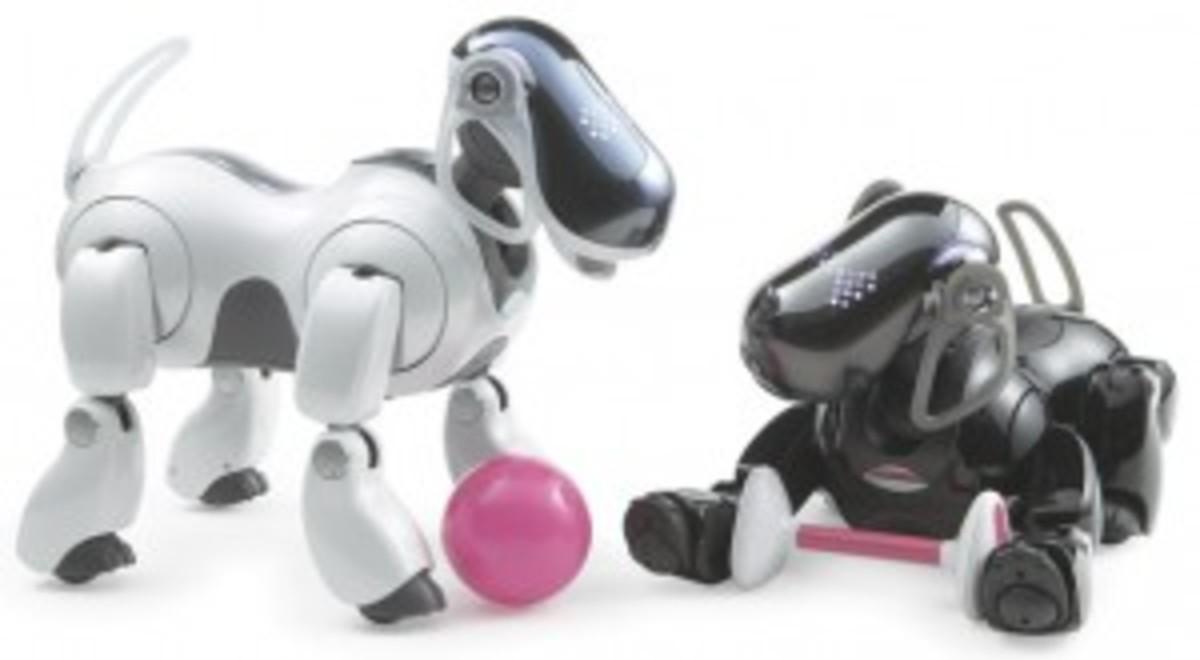 robotdogs-300x165