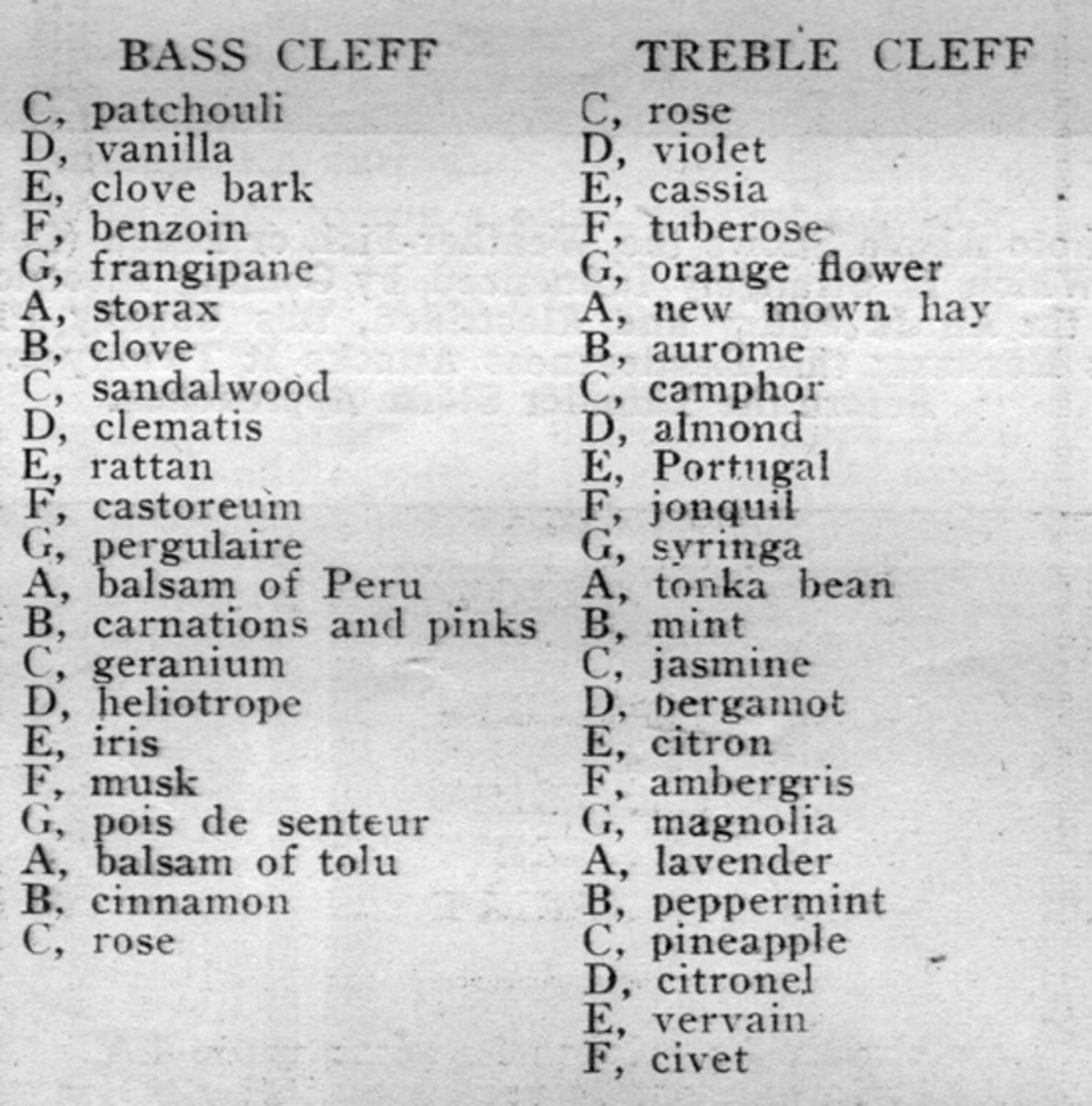 smell-organ-notes-sm