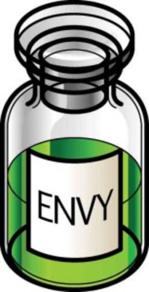 ENVY-153x300