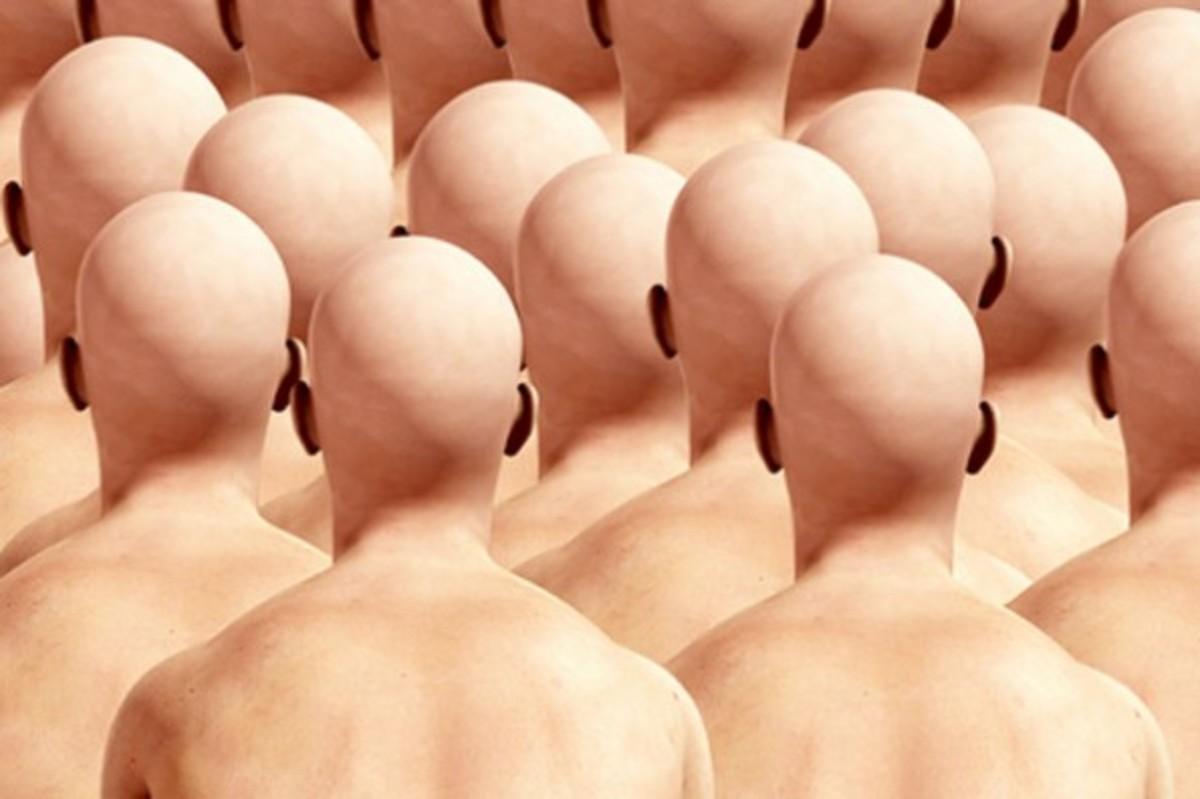 baldheads-595x396