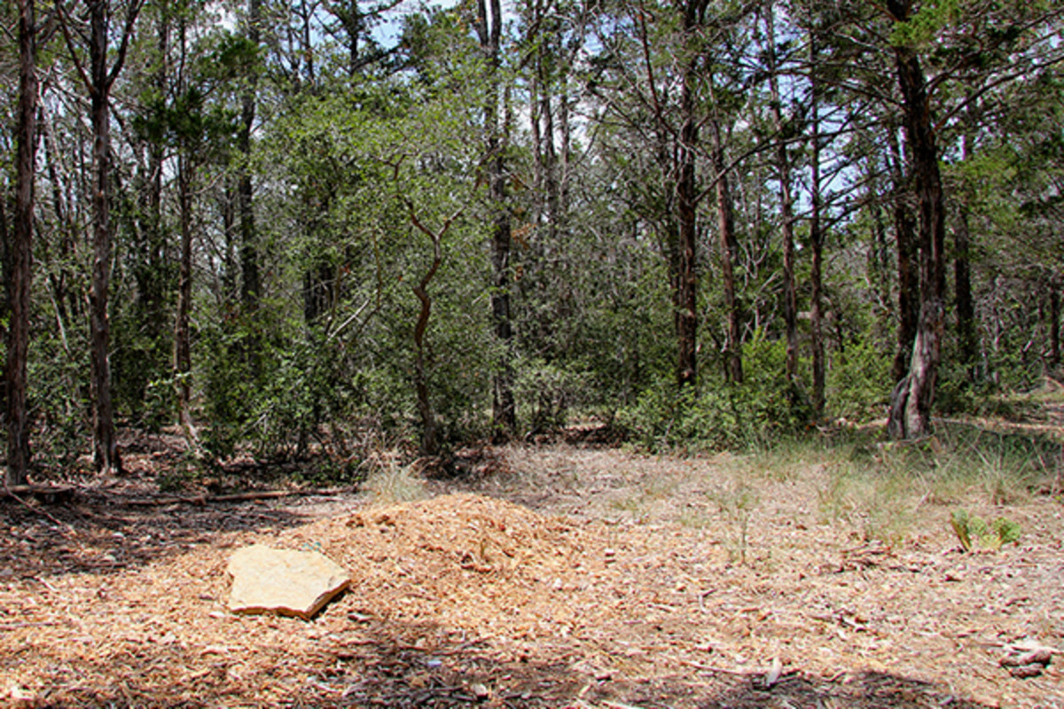 A grave in Eloise Woods Community Natural Burial Park, Cedar Creek, Texas. United States. (PHOTO: LARRY D. MOORE)