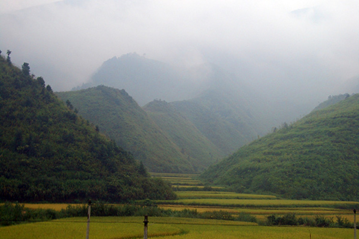 Rice fields in Tongshan County, Hubei. (PHOTO: VMENKOV/WIKIMEDIA COMMONS)