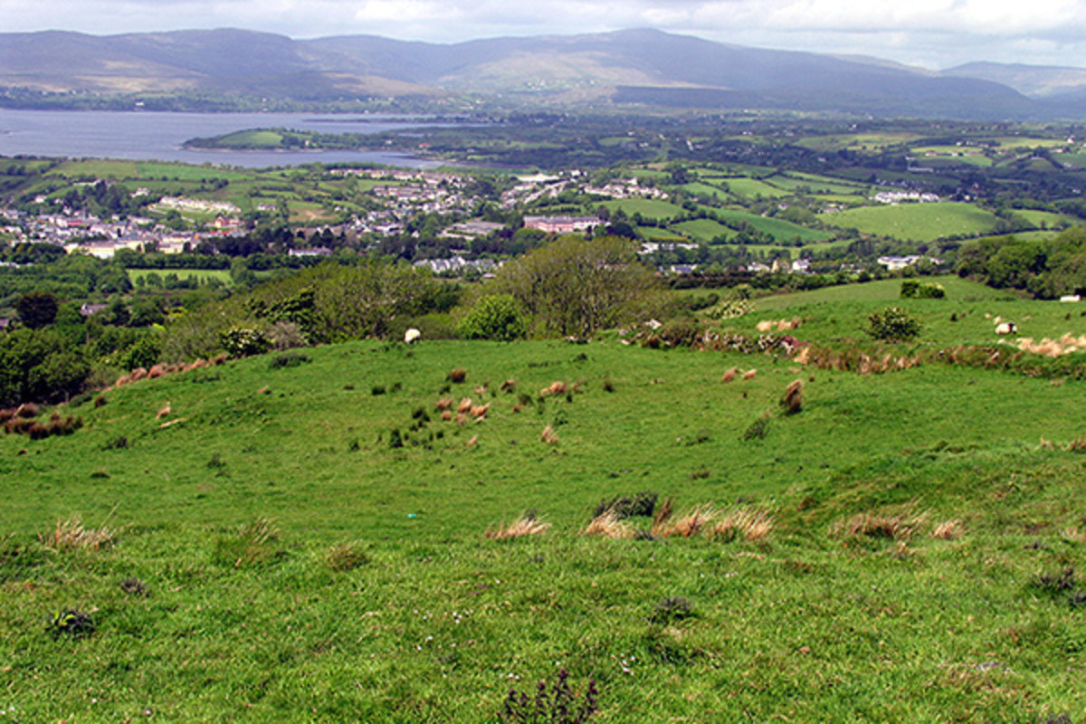 Rolling green pastures near Bantry, County Cork. (PHOTO: PAM BROPHY/WIKIMEDIA COMMONS)