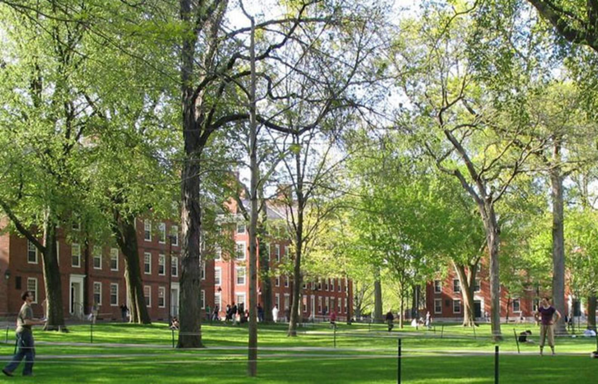 Harvard Yard. (Photo: Public Domain)