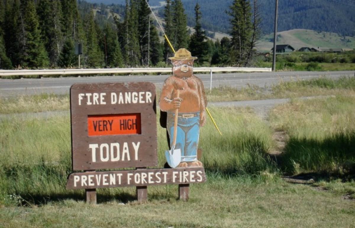 Shut up, Smokey. (Photo: stublag/Flickr)