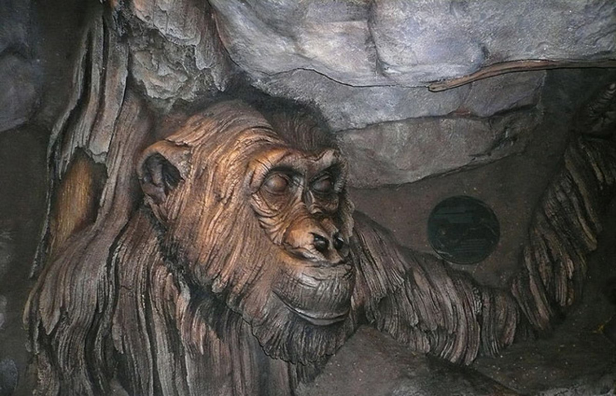 David Greybeard sculpture at Disney's Animal Kingdom. (Photo: Michaelagray/Wikimedia Commons)