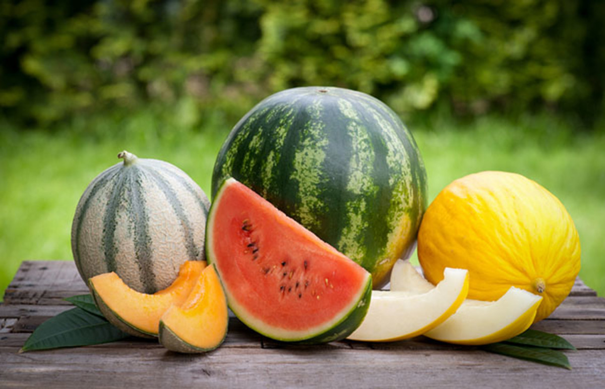 Fresh melons. (Photo: Christian Jung/Shutterstock)