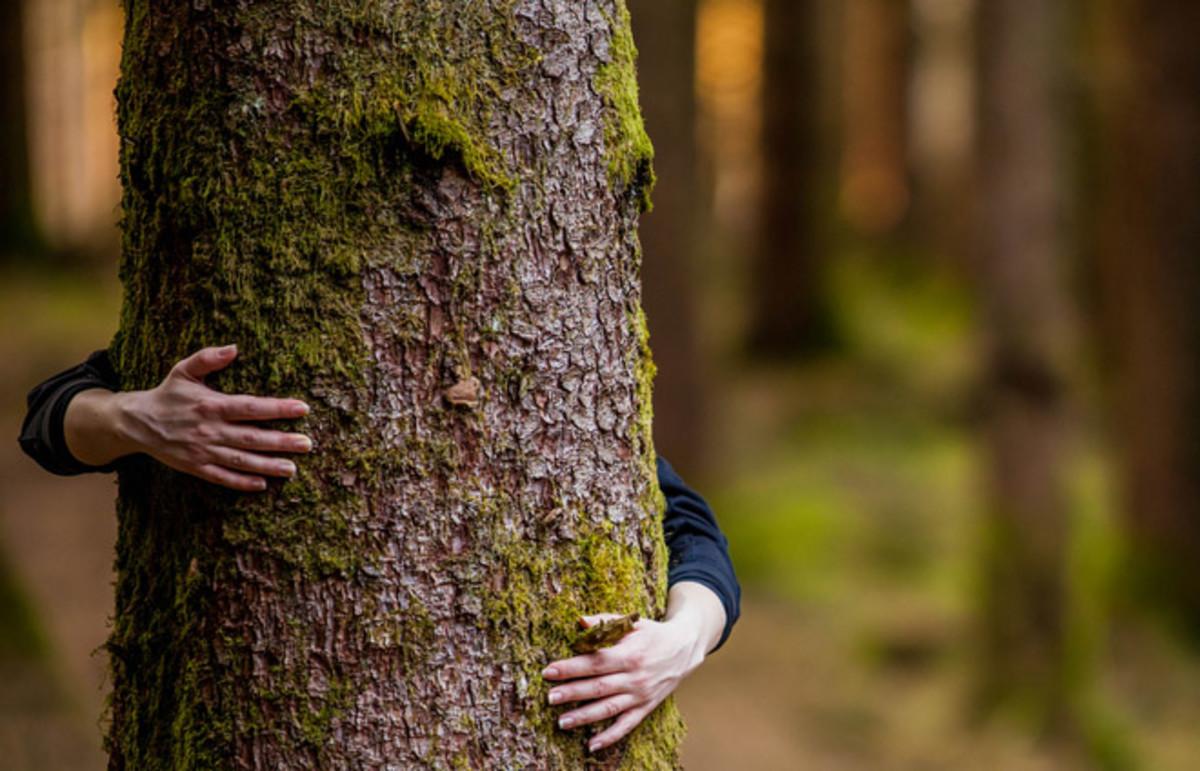 (Photo: Andrei S/Shutterstock)