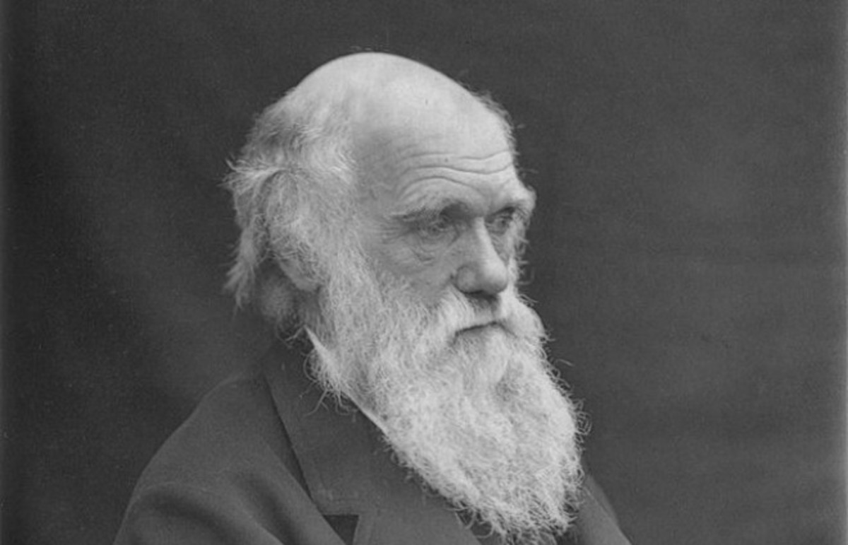 Charles Darwin. (Photo: Wikimedia Commons)