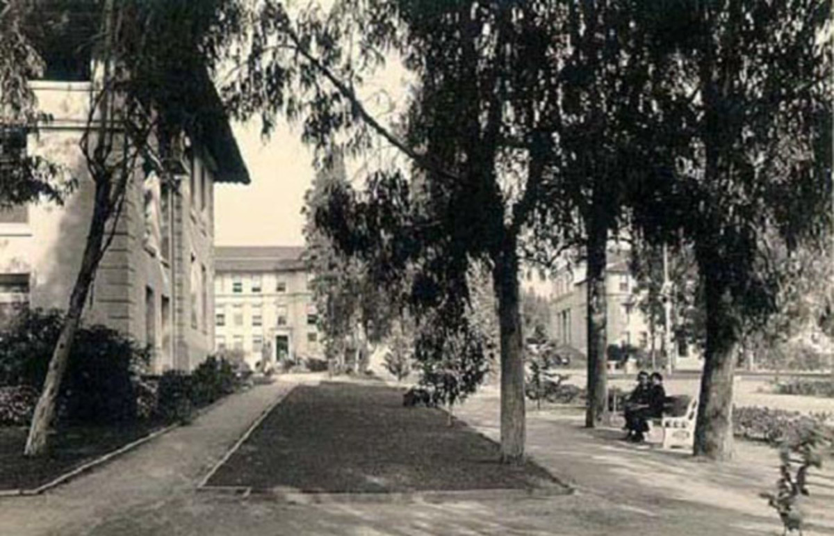 Occidental College in the 1920s. (Photo: Public Domain)