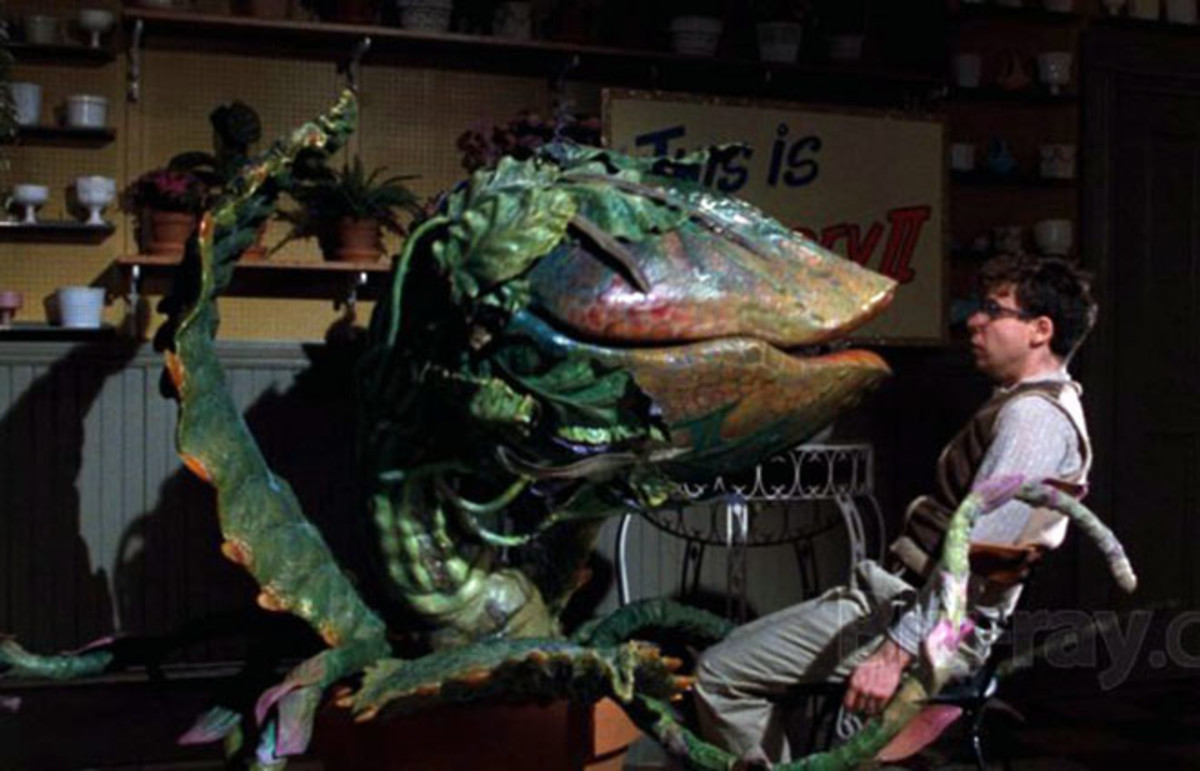 Little Shop of Horrors. (Photo: Warner Bros.)