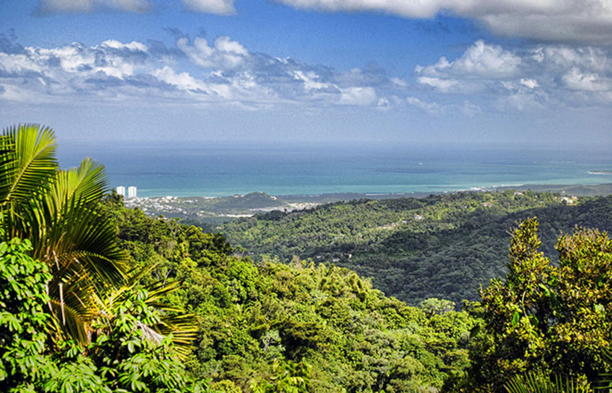 Looking northeast from El Yunque National Park in Puerto Rico. (Photo: Trish Hartmann/Flickr)