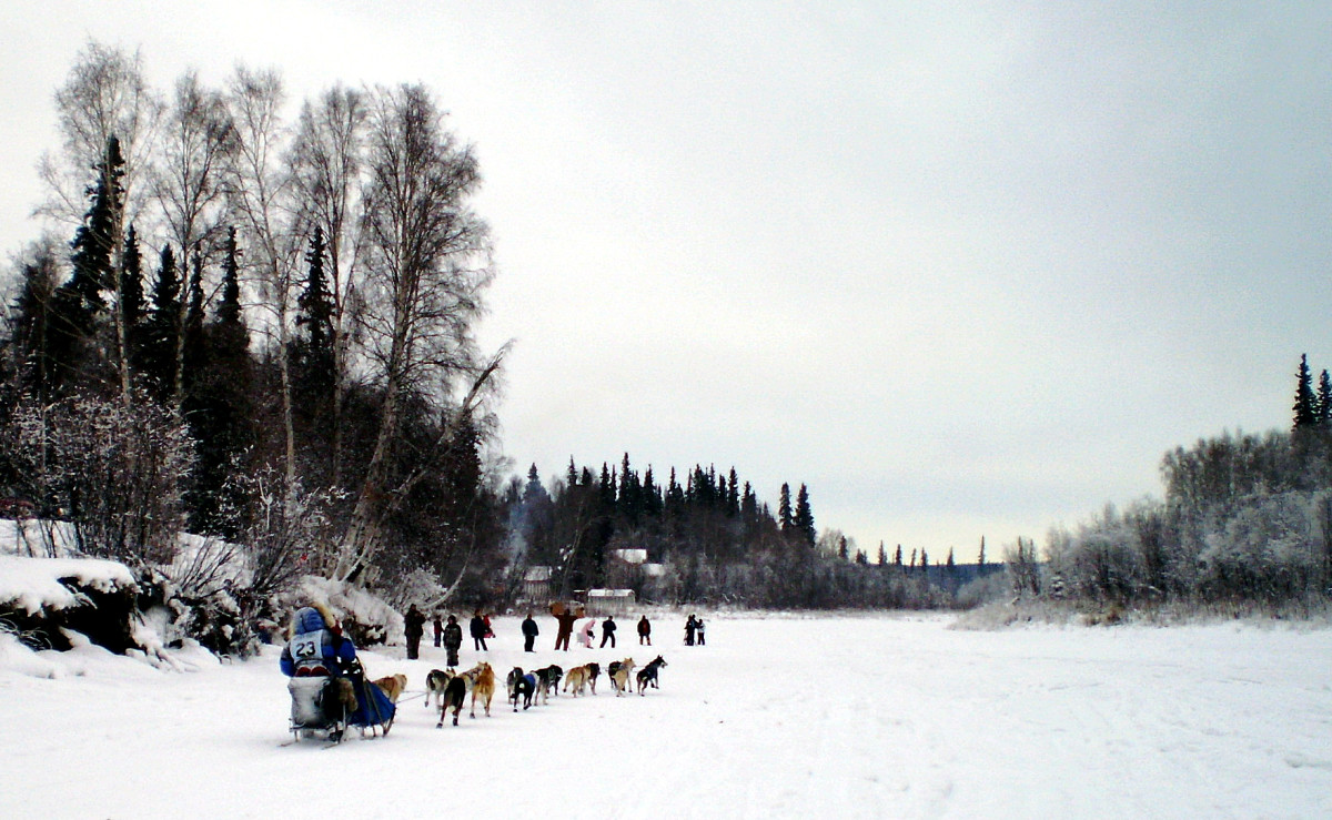 Hugh Neff in an earlier Yukon Quest. (Photo: James Brooks/Flickr)