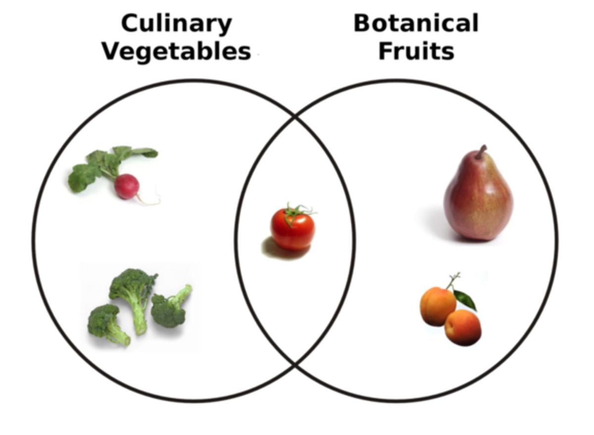 Fruit vs. vegetable Venn diagram. (Photo: LiveScience)