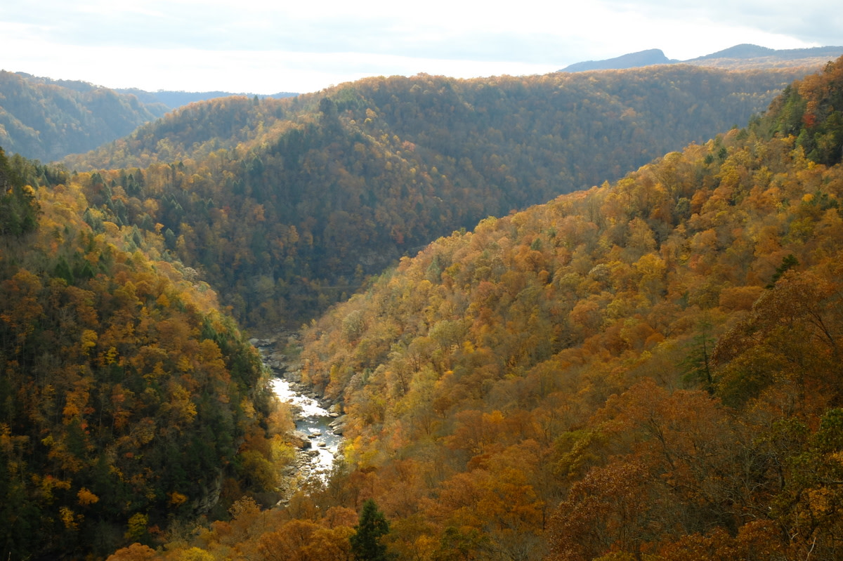 Breaks Interstate Park in Pike County, Kentucky, on the Kentucky-Virginia border. (Photo: Dan Grogan/Wikimedia Commons)