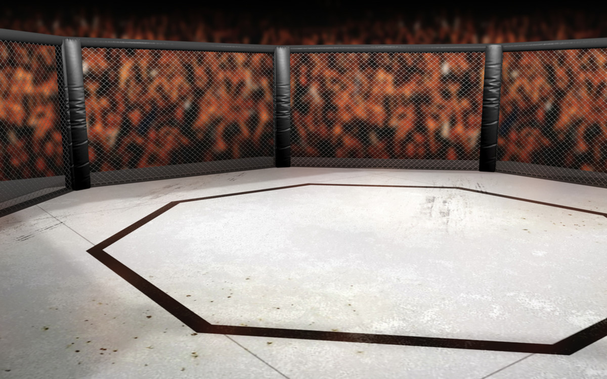 Empty cage-fighting octagon. (Photo: Neil Lockhart/Shutterstock)