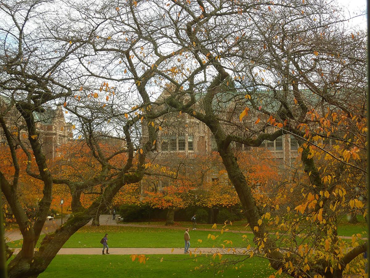 Quad at the University of Washington. (Photo: akirlu/Flickr)