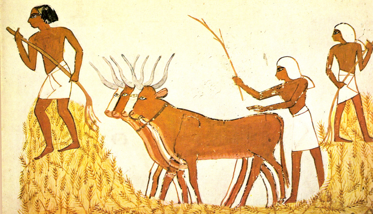 Threshing wheat in ancient Egypt. (Photo: Carlos E. Solivérez/Wikimedia Commons)