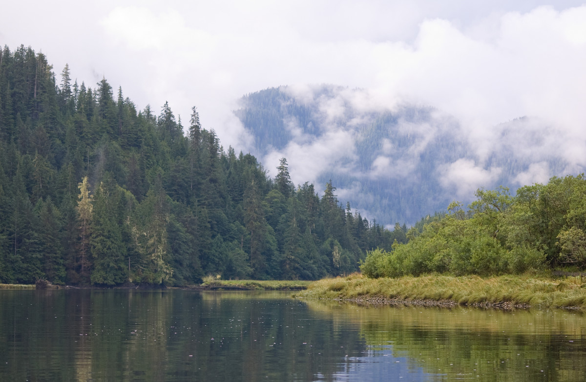 The Smith Inlet, in British Columbia's Great Bear Rainforest. (Photo: Neil Balderson/Shutterstock)