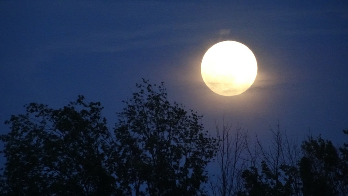 A full moon. (Photo: Rachel Kramer/Flickr)