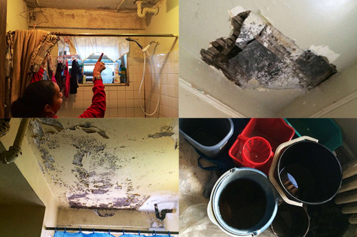 Clockwise from top left: A NYCHA resident points out mold in her shower; Maria Santana's living room has a hole in the ceiling and she's placed buckets around her apartment to catch water; A ceiling in need of repair in the Melrose Houses in the South Bronx. (Photos: Marian Wang/ProPublica)