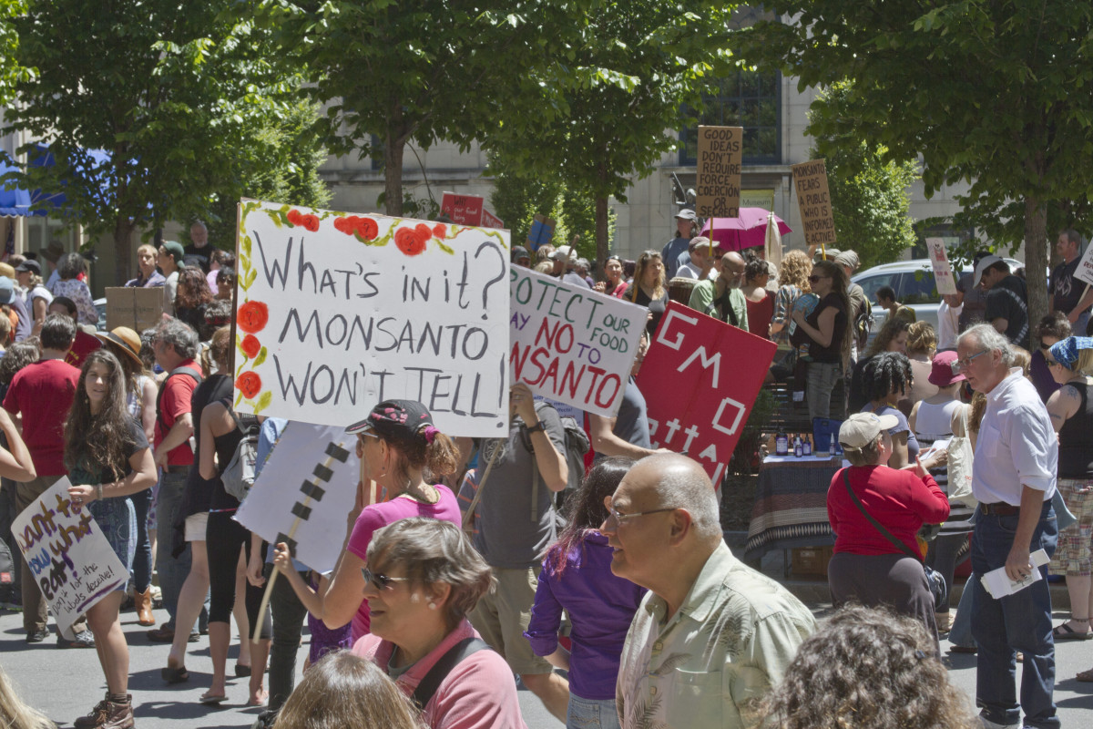 A crowd of GMO and Monsanto protesters with signs at a rally in Pack Square in Asheville, North Carolina, on May 25, 2013. (Photo: J. Bicking/Shutterstock)