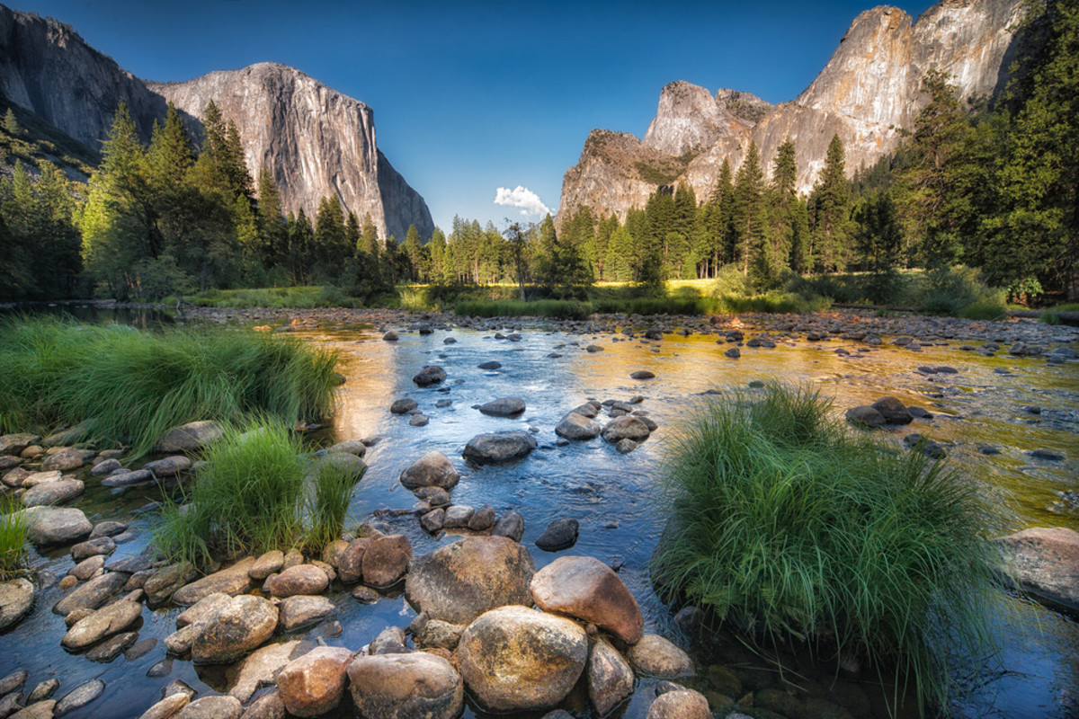Yosemite National Park. (Photo: Francesco Ferrarini/Shutterstock)