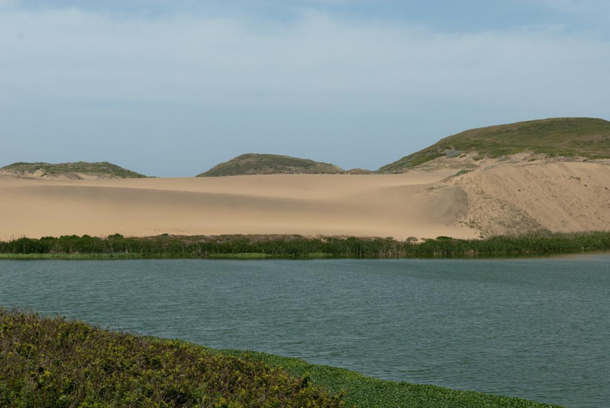 Abbotts Lagoon. (Photo: Jesse Wagstaff/Flickr)