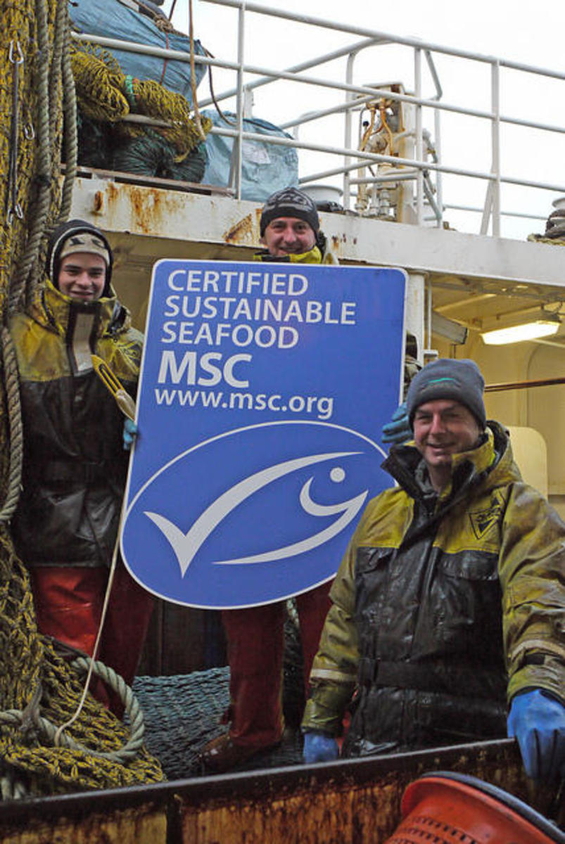(Photo: Marine Stewardship Council)