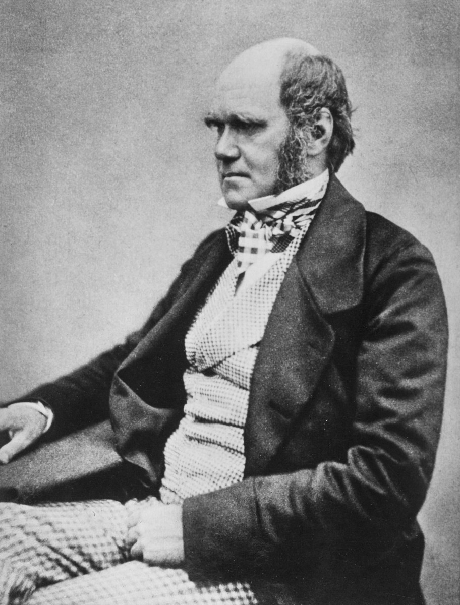 Charles Darwin, the man himself. (Photo: Wikimedia Commons)
