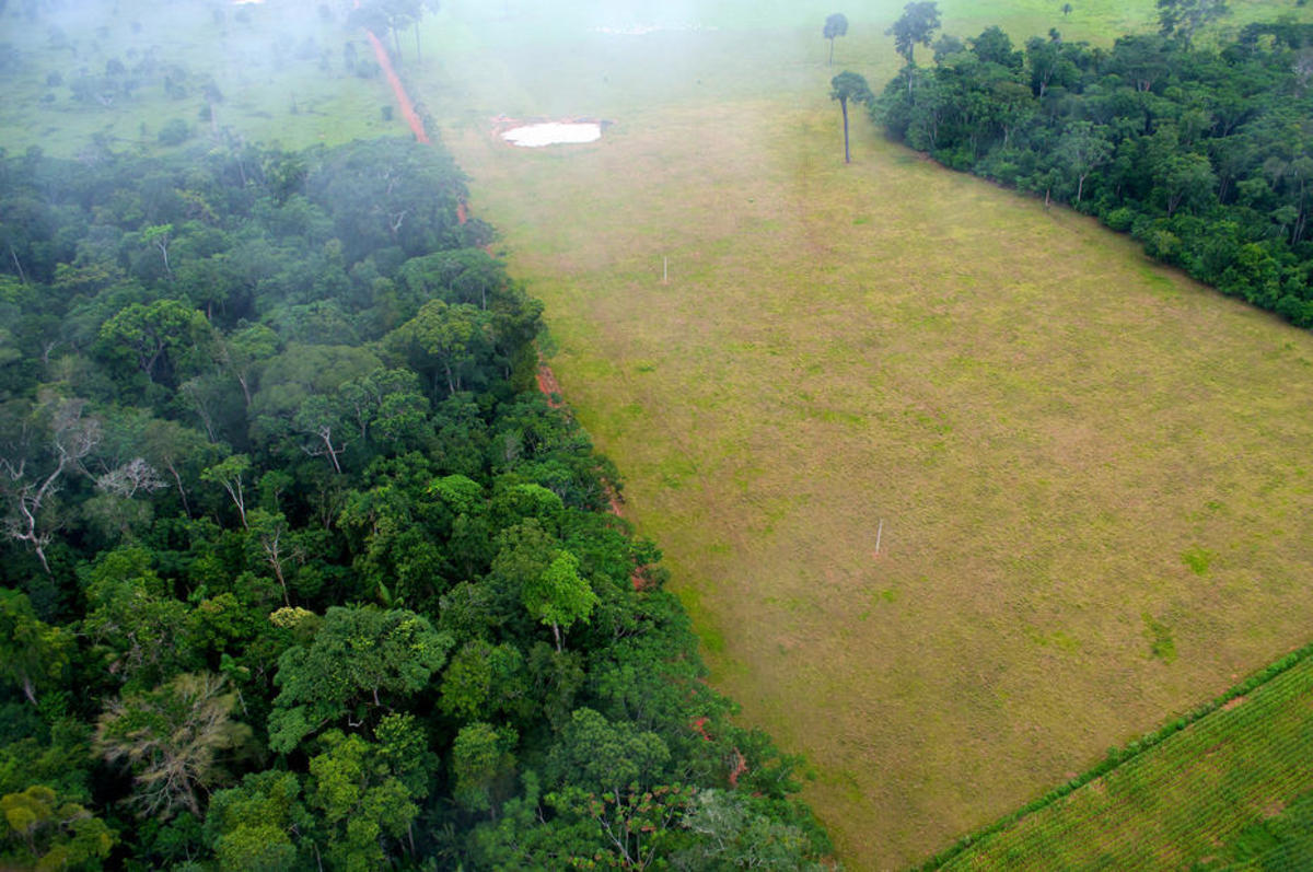 An aerial image shows the contrast between forest and agriculture land in Brazil. (Photo: Kate Evans, CIFOR/Flickr)