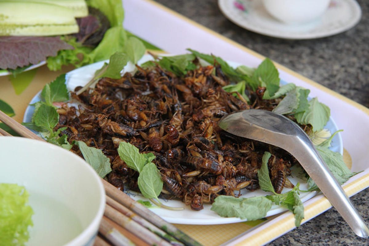 Fried insects in Thailand. (Photo: Richard Allaway/Flickr)
