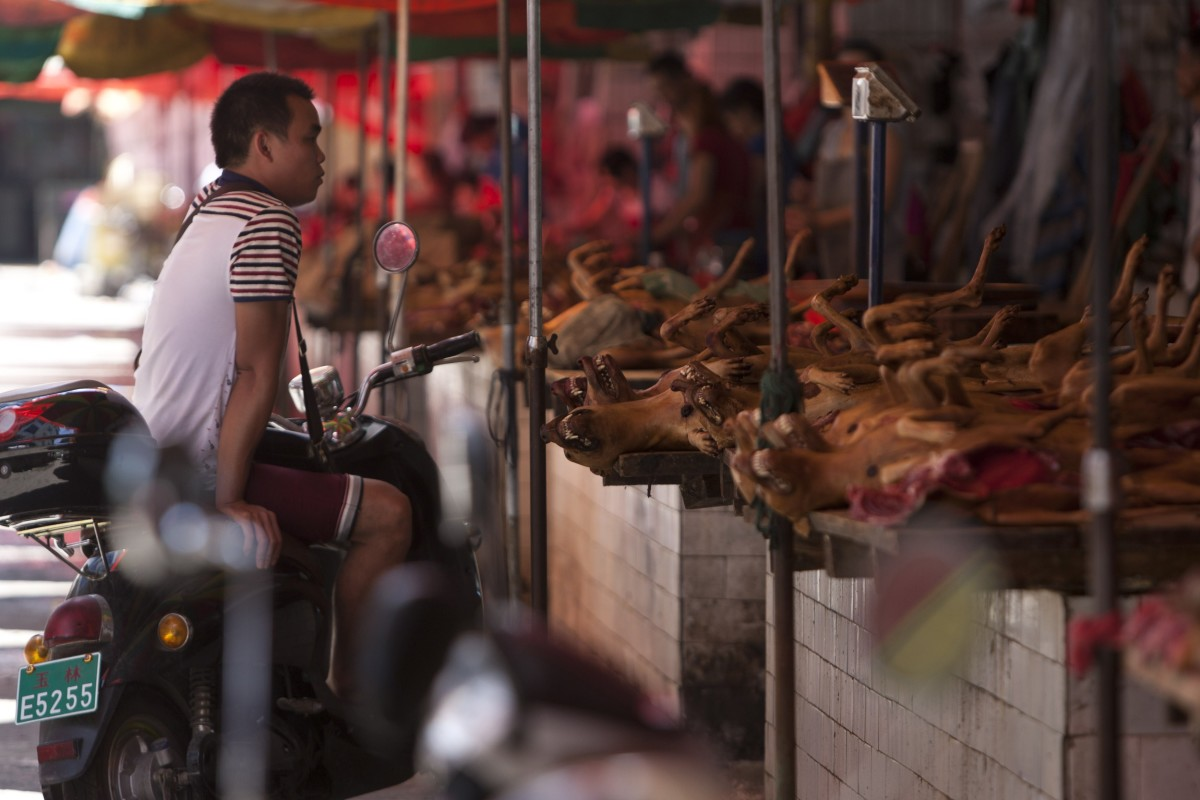 Dog meat on sale at a market in Yulin, in southern China's Guangxi province. (Photo: STR/AFP/Getty Images)